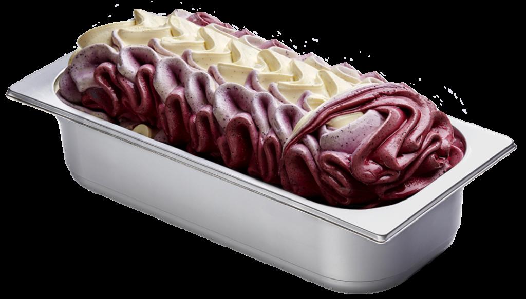 Vanille-Heidelbeeren Eis
